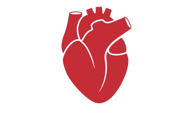 Study: VKAs Better Protect Aortic Valve Replacement Patients.