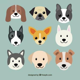 Dog Vectors, Photos and PSD files.