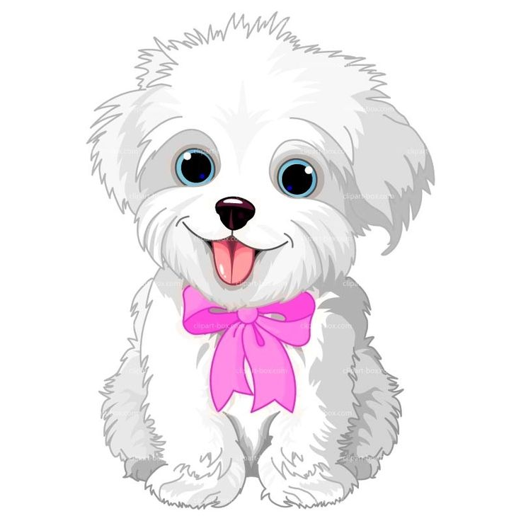 17 Best images about Clipart Cute Animals on Pinterest.