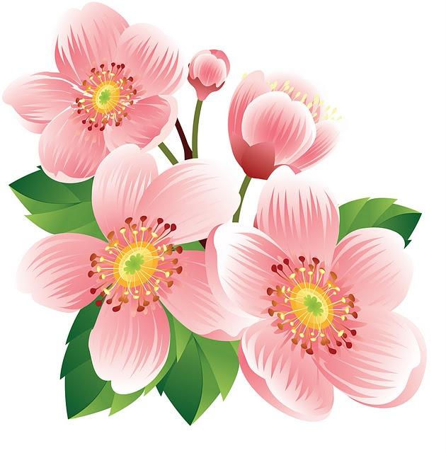 Flower Clipart Pinterest.