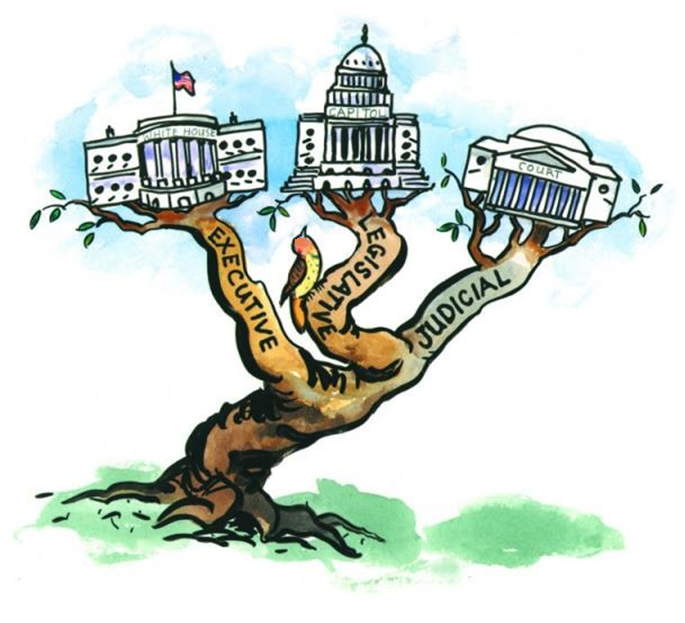 The Three Branches of Federal Government.