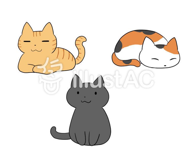 3 cats.