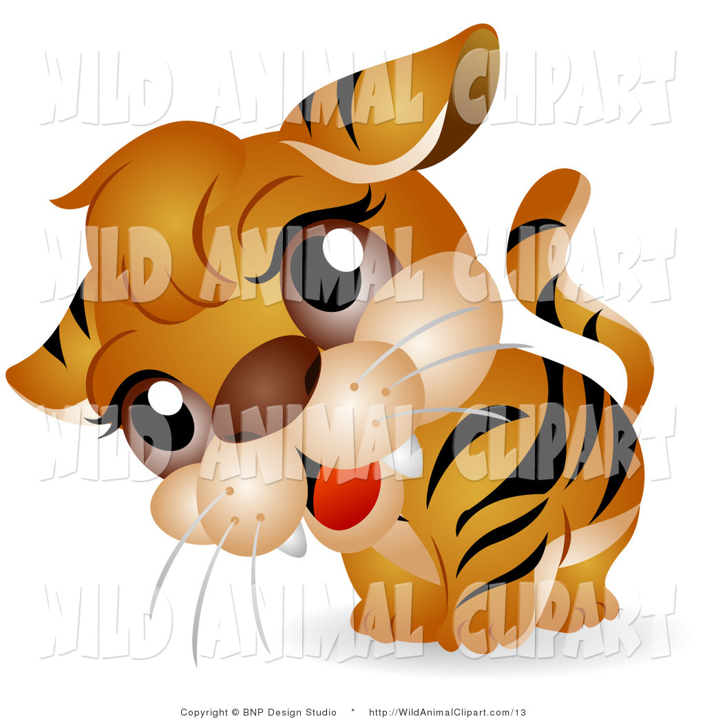Clip Art of a Tiger Cub with a Cocked Head by BNP Design.