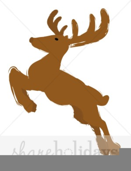 Deer clipart rain, Deer rain Transparent FREE for download.