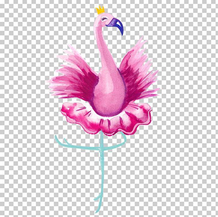 Vertebrate Ballet Dancer Bird Flamingo PNG, Clipart, Animal.