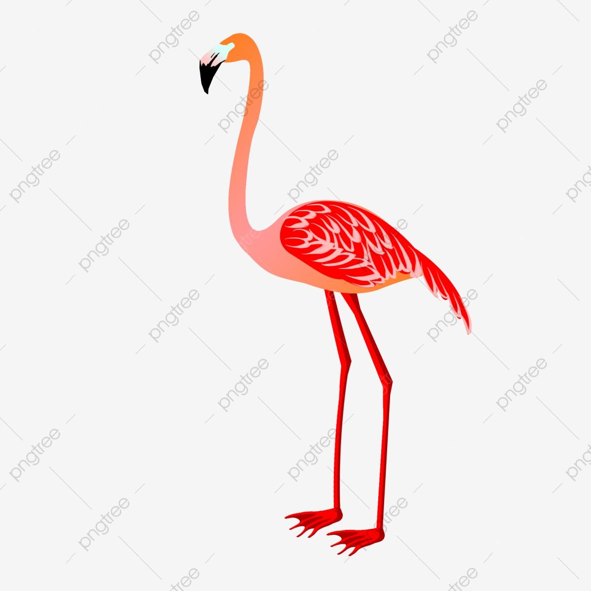 Flamingo clipart female, Flamingo female Transparent FREE.