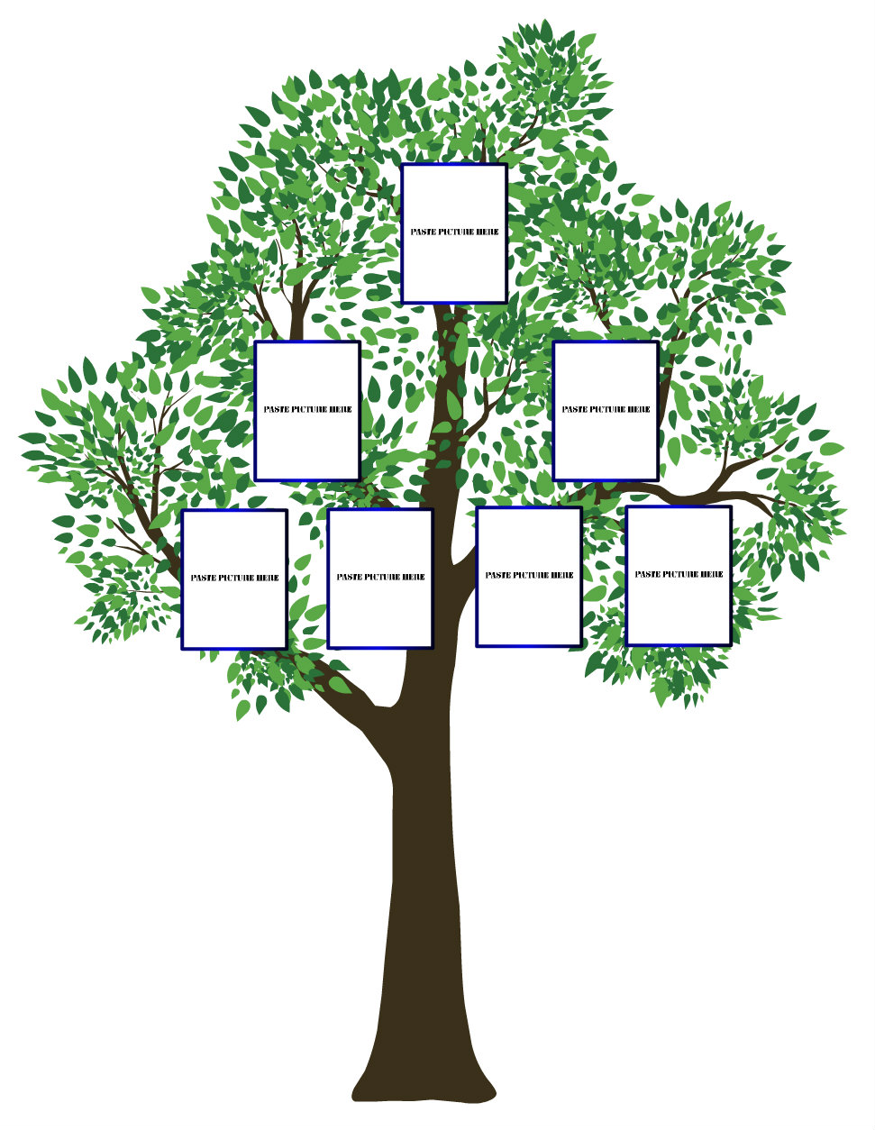 Three Generation Family Tree Templates images.