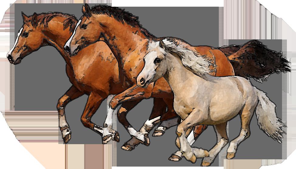 horse clipart. clipart horse. download race horse silhouette.