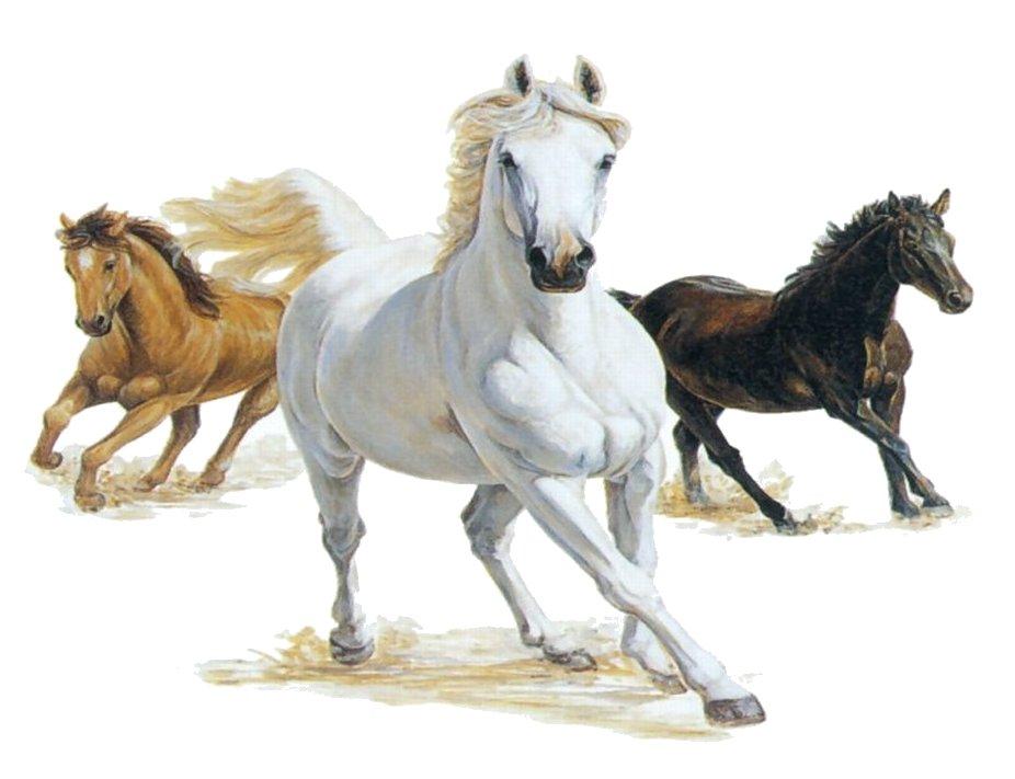 3 Horses Clipart.