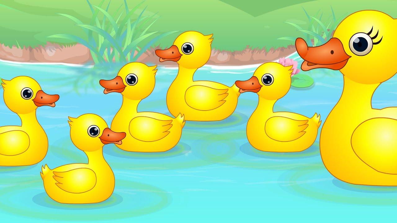 Clipart duck little duck, Clipart duck little duck.