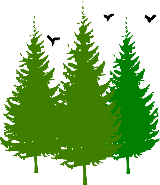 3 Pinetrees With Birds Clip Art at Clker.com.