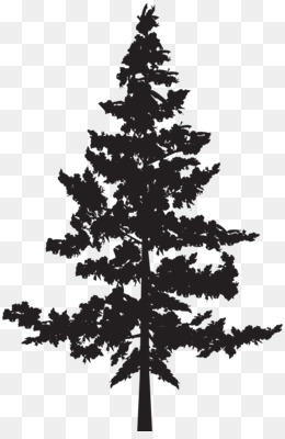 Pine Tree Silhouette PNG.