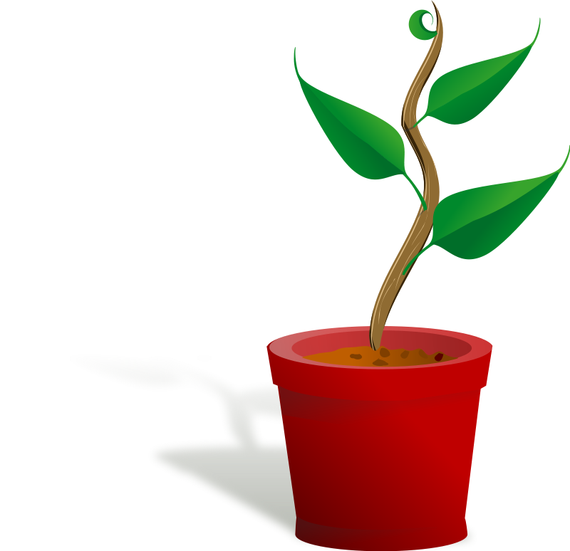 Container plants clipart 20 free Cliparts.