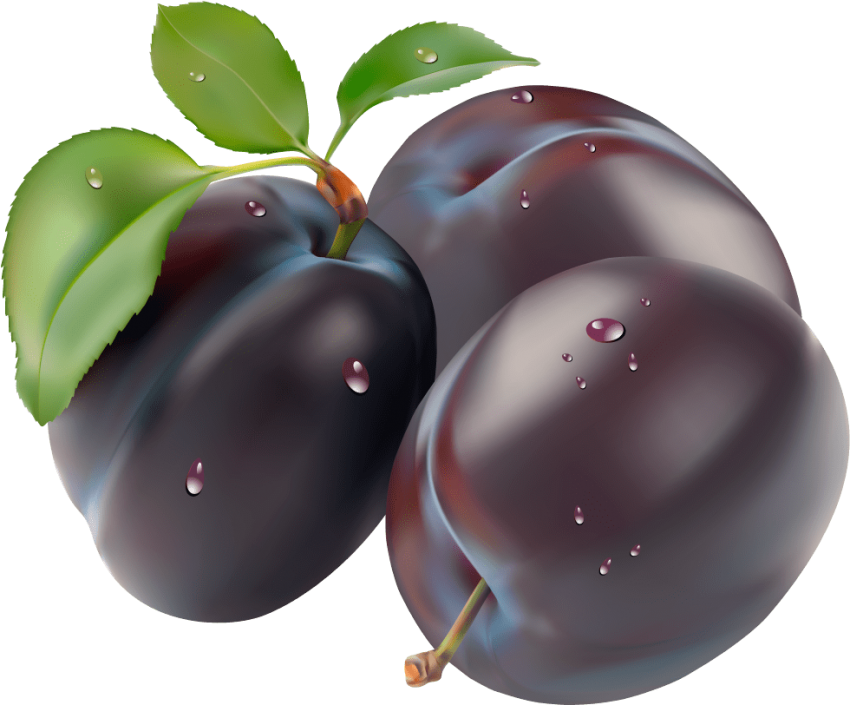 Plum clipart real, Plum real Transparent FREE for download.