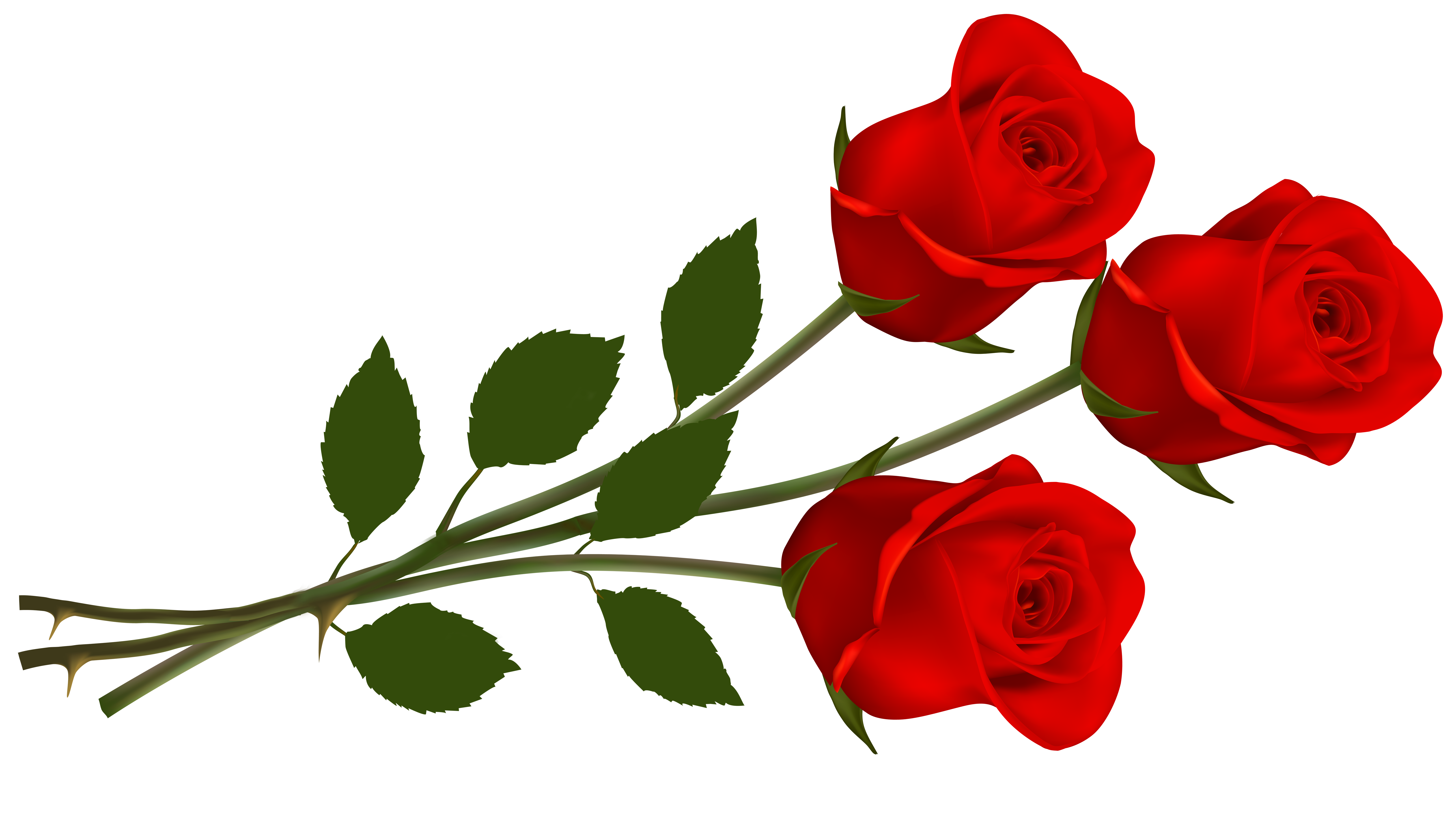 Large Red Roses PNG Clipart.