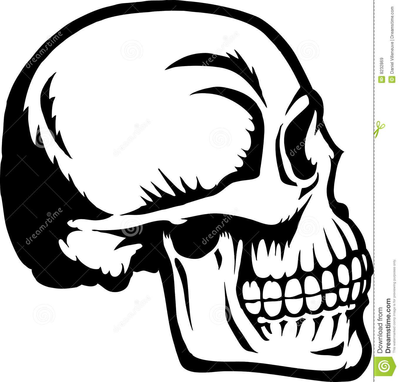 Skull profile clipart 3 » Clipart Station.