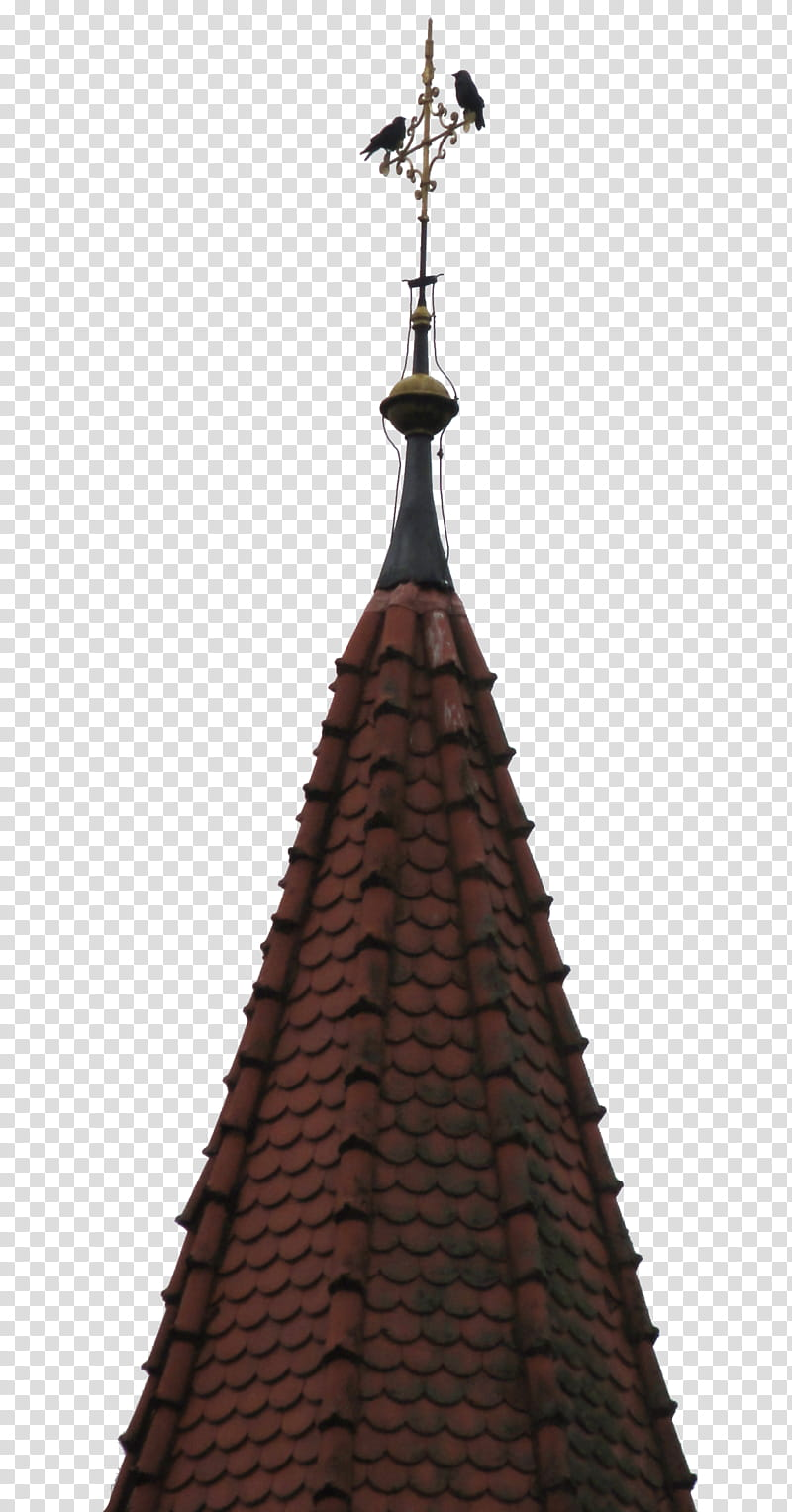 Crows on Chruch top cross , brown and gray shingles.