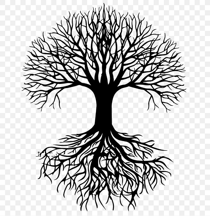 Tree Silhouette Root Clip Art, PNG, 696x841px, Tree, Artwork.