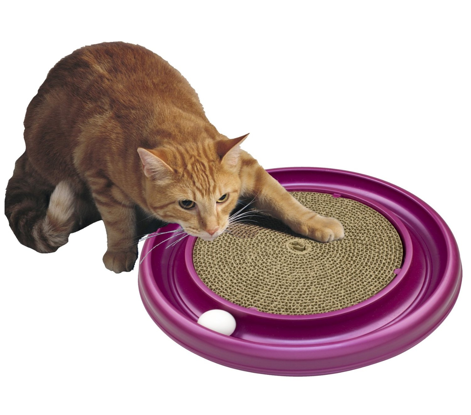 Amazon.com : Bergan Turbo Scratcher Cat Toy : Scratching Pads.