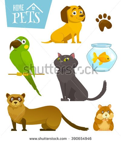 Pet Stock Photos, Royalty.