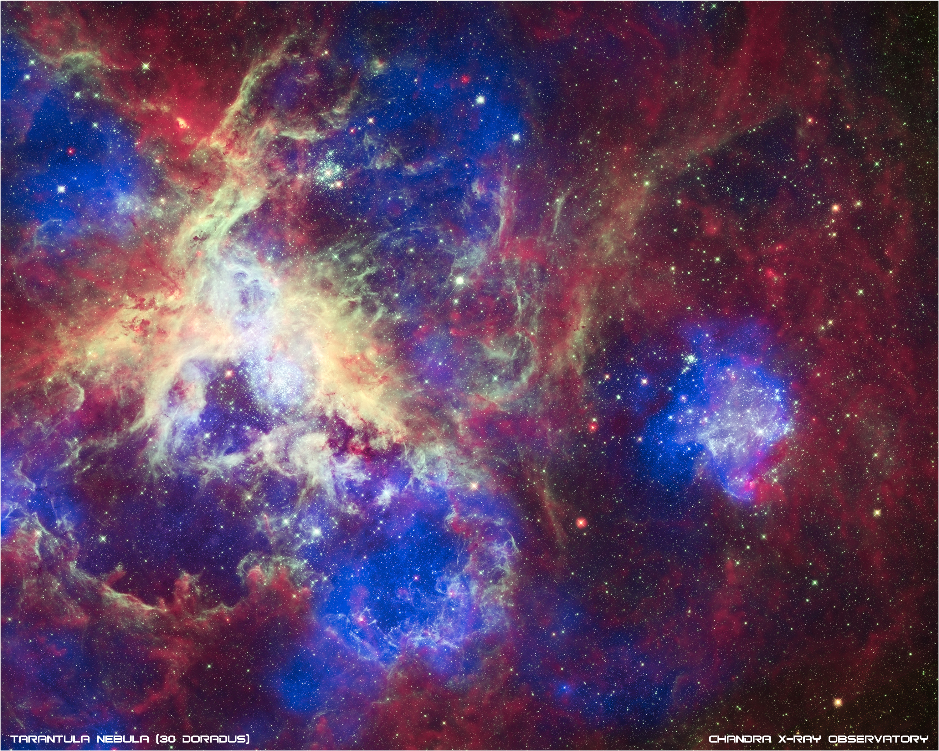 A New View of the Tarantula Nebula.