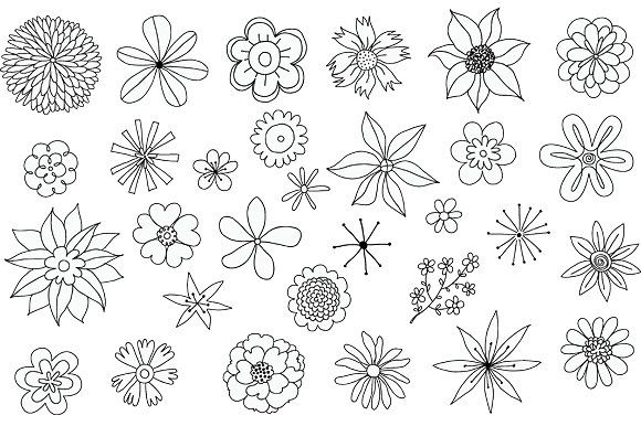 30 Hand Drawn Flowers Vector Clipart #file#higher#files#EPS.
