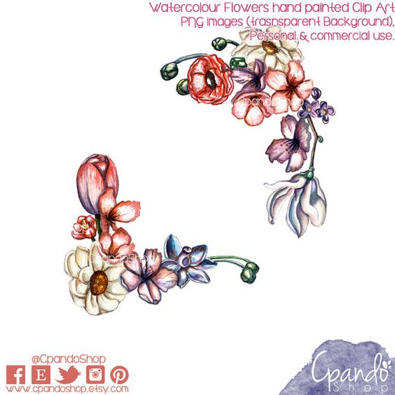 Watercolor flowers hand painted Clipart (2png images transparent.