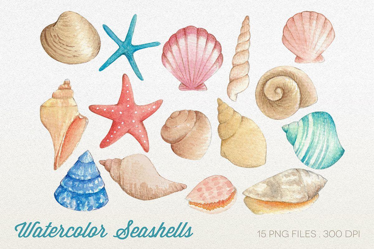 Watercolor Seashells Clipart.