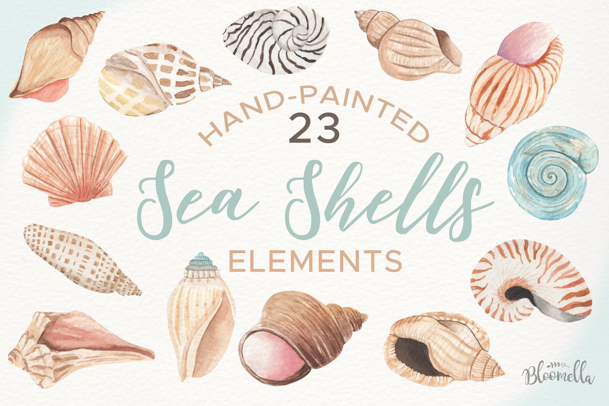Watercolor Sea Shells Clipart Set.
