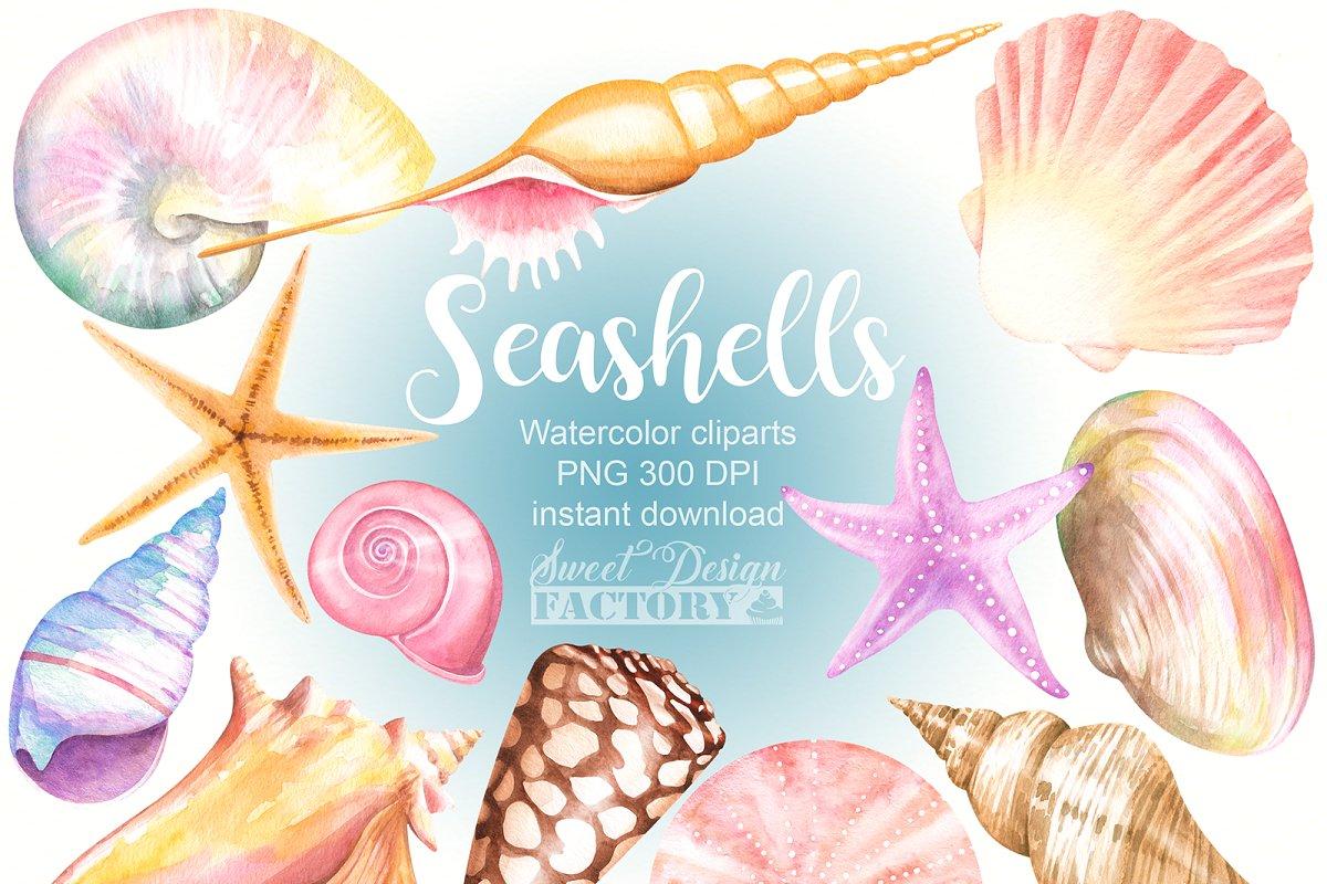 Watercolor seashells cliparts ~ Illustrations ~ Creative Market.