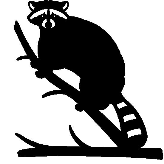 raccoon clip art #31.