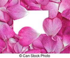 Rose petals Vector Clipart EPS Images. 16,097 Rose petals clip art.