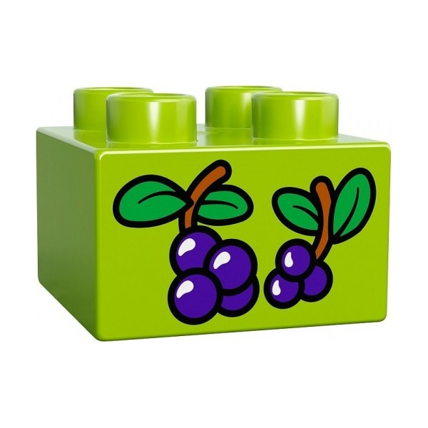 Lego zoo care Free delivery price in karachi Lahore Peshawar.