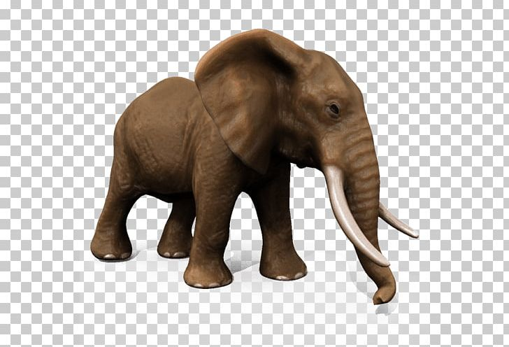 African Elephant Asian Elephant Animal 3D Modeling PNG, Clipart, 3d.