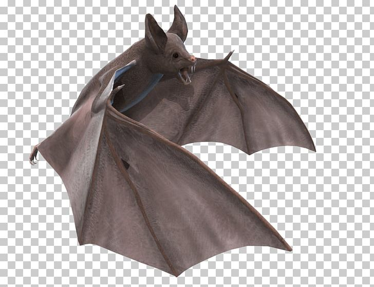 Grey Bat 3D Illustration PNG, Clipart, Animals, Bats Free.