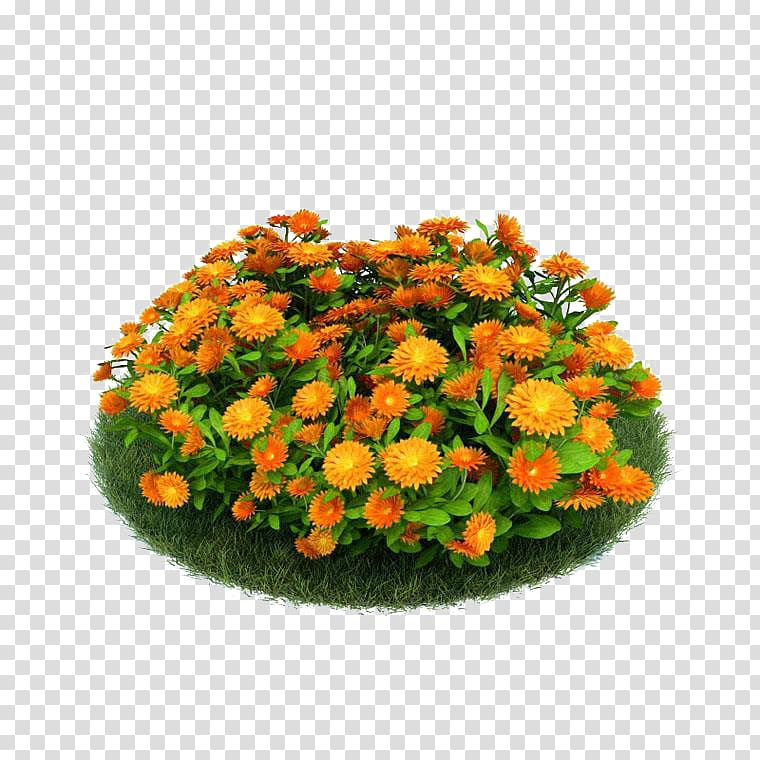 D computer graphics 3D modeling Flower Garden Seed, Pot.