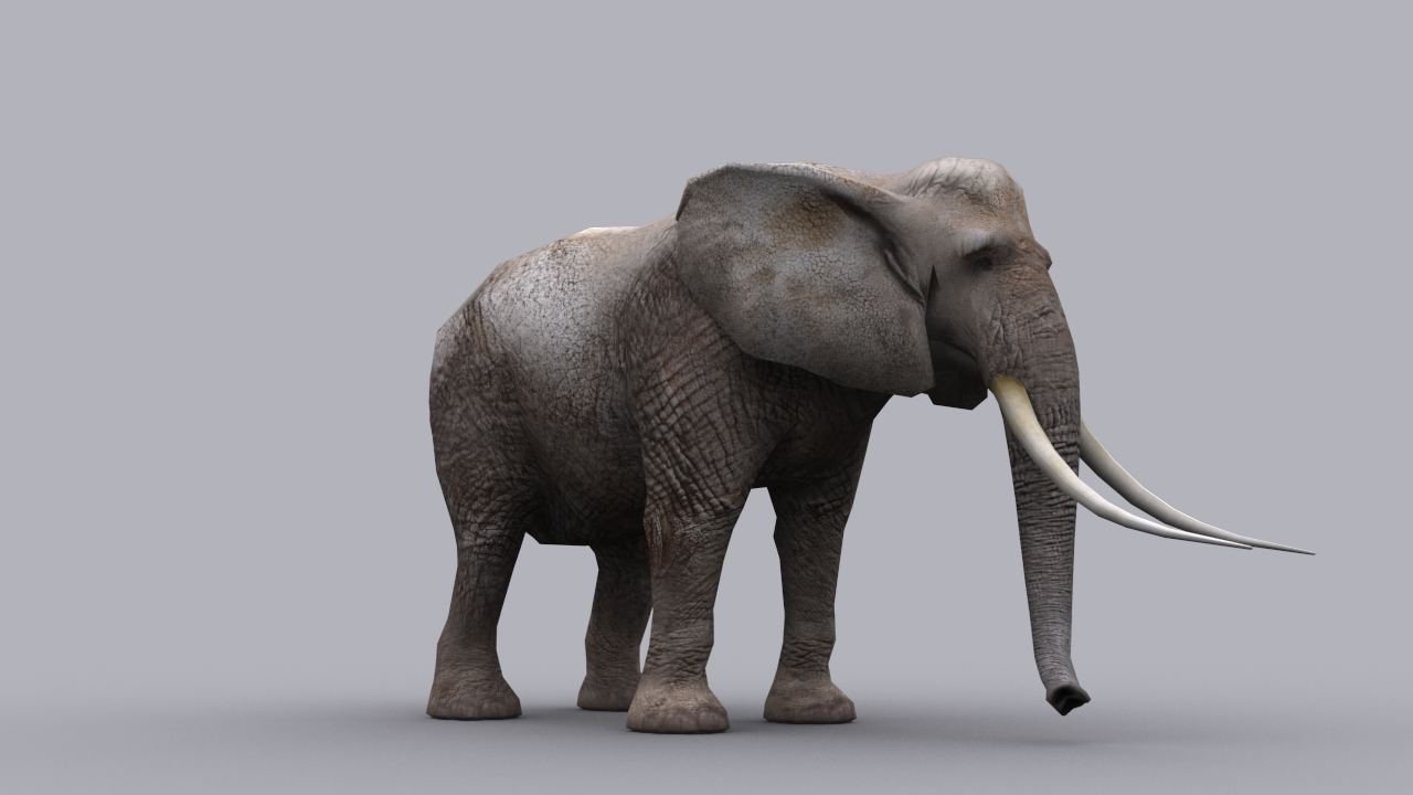 ELEPHANT GAME READY ANIMATED MODEL 3D Model Game ready.