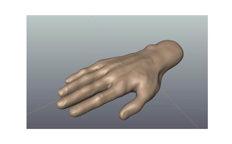 3d Hand model.
