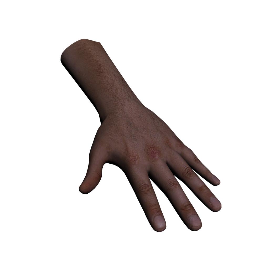 3D model Hand.