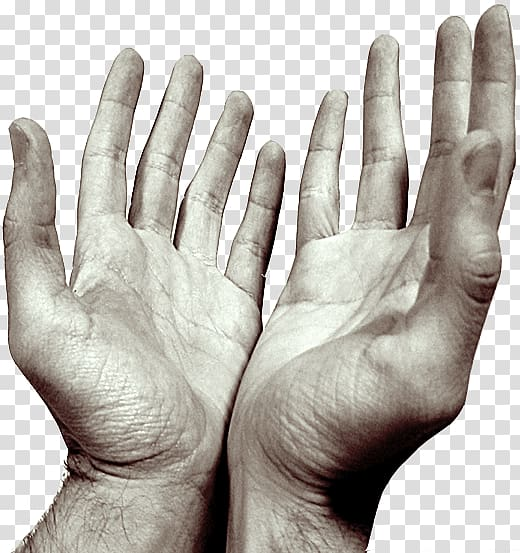 Hand 3D model, Hands Praying Open transparent background PNG.