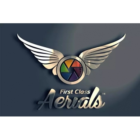 Professional 3D logo design exclusive to the image of the company.