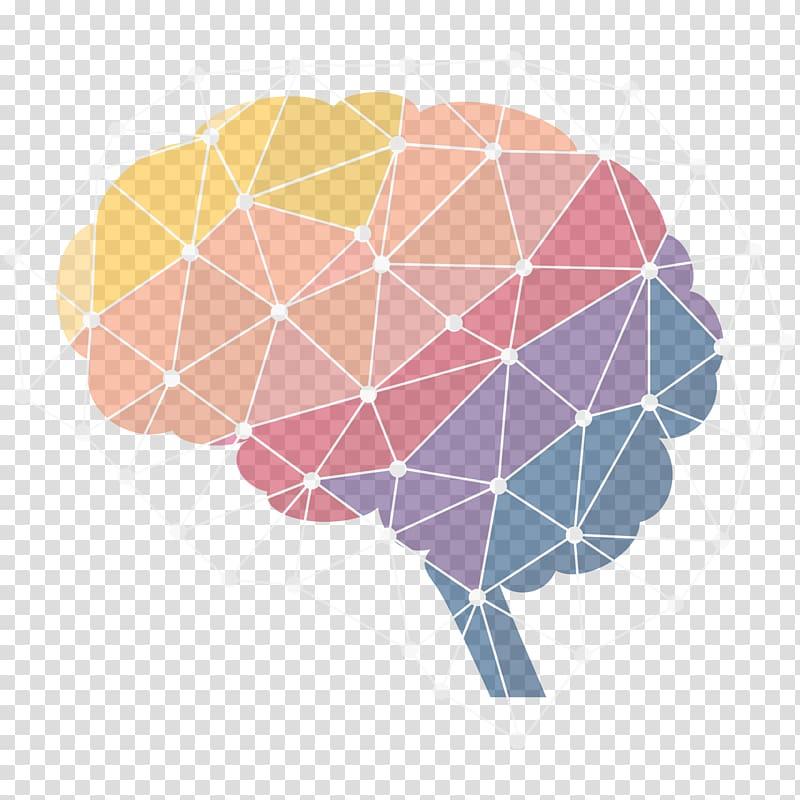 Human brain Neuroscience Neuroimaging Infographic, Science.
