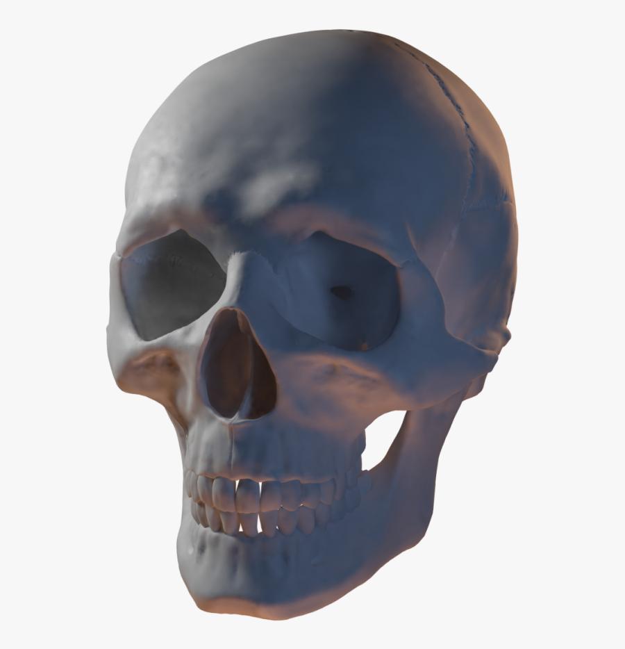 Clip Art 3d Skull.