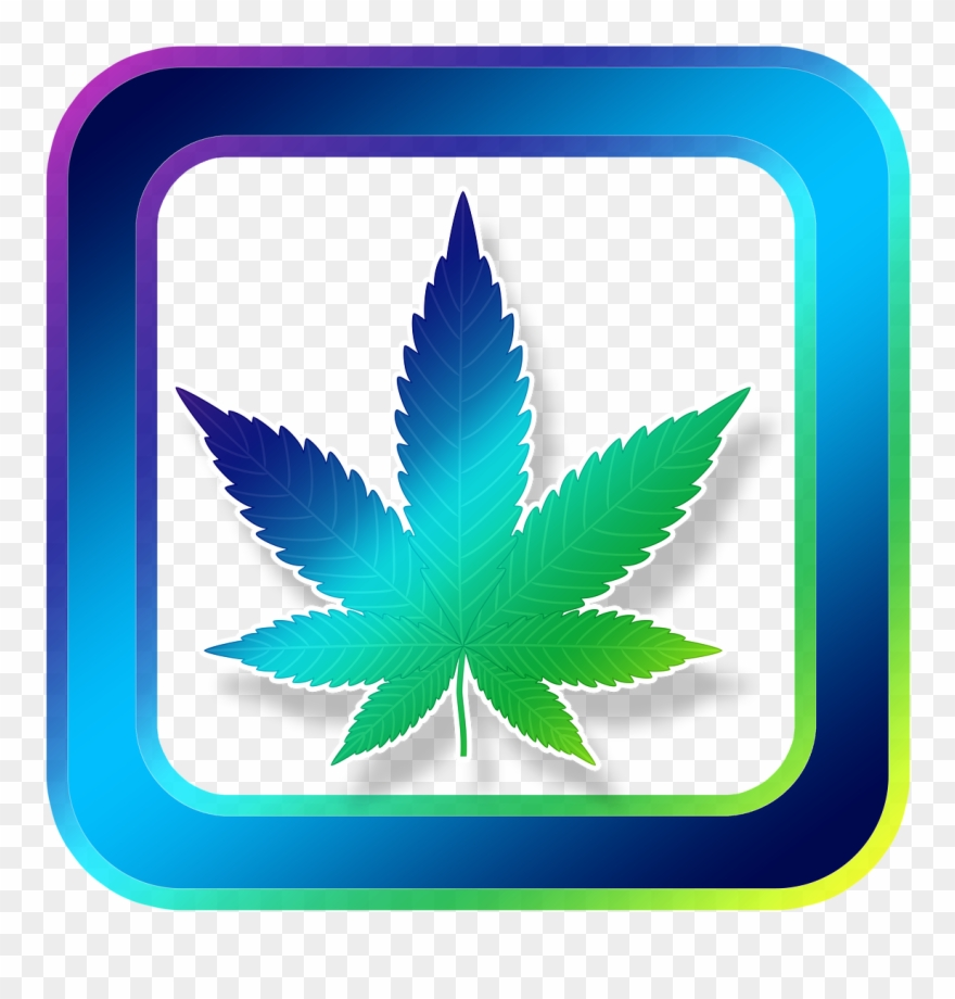 Cannabinoids In The Management Of Difficult To Treat.
