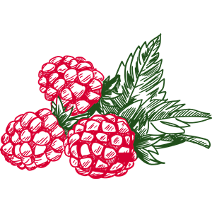 Raspberry 4 clipart, cliparts of Raspberry 4 free download.