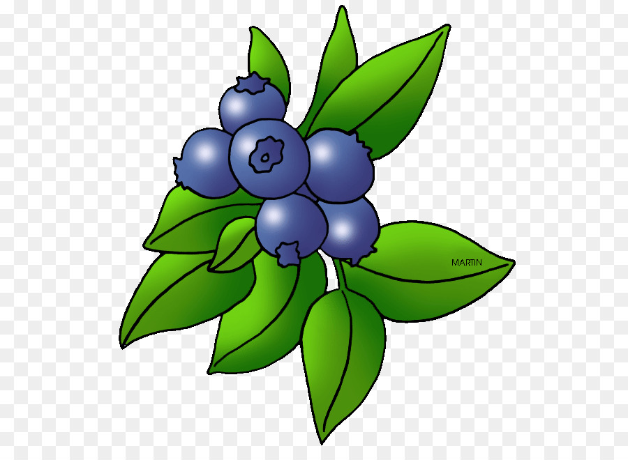 Berry clipart berry plant, Berry berry plant Transparent.