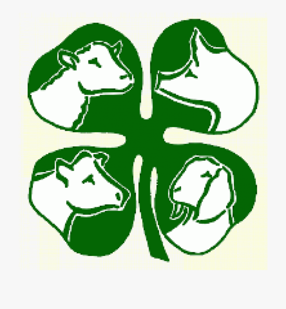 4 H Clipart Free.