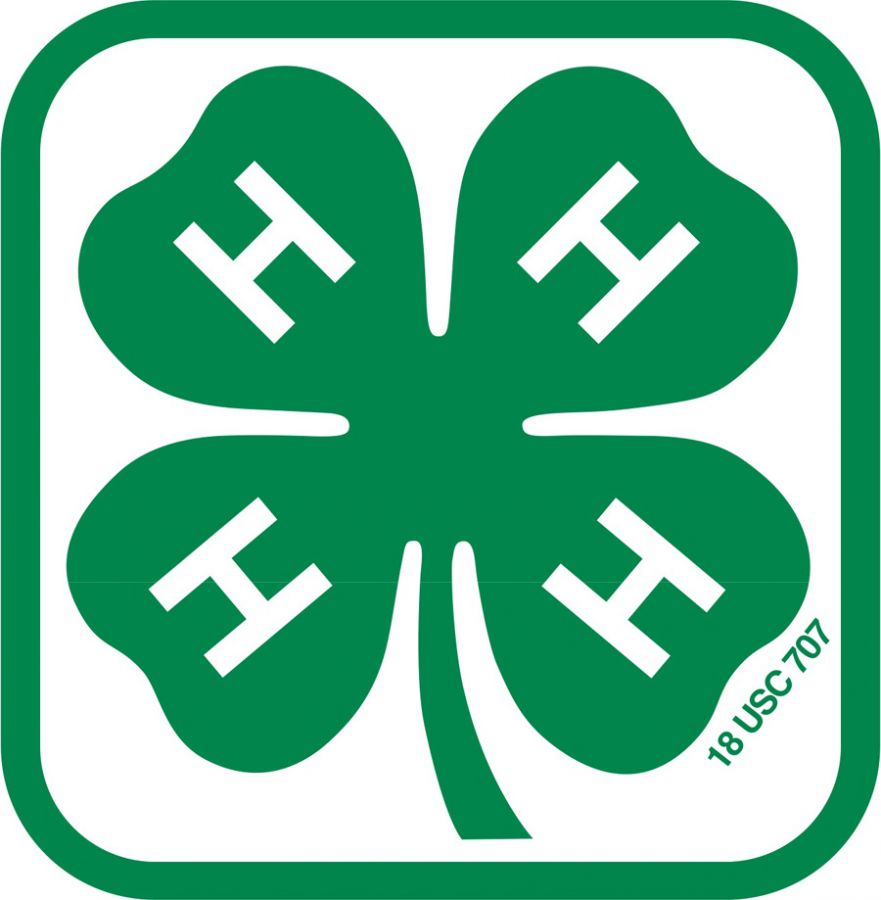 14 cliparts for free. Download Clover clipart clover 4h logo and use.
