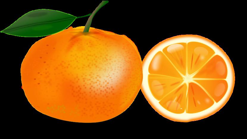 Orange clipart 4.