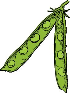 Pea Pod clip art (114763) Free SVG Download / 4 Vector.
